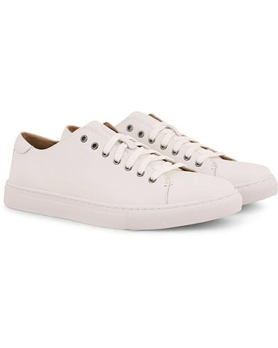 Polo Ralph Lauren Jermain Calf Sneaker White